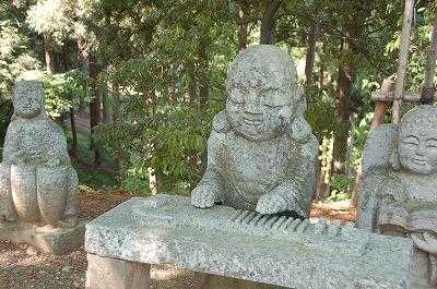 西山公園(鯖江市)の裏手には冒険の森が01