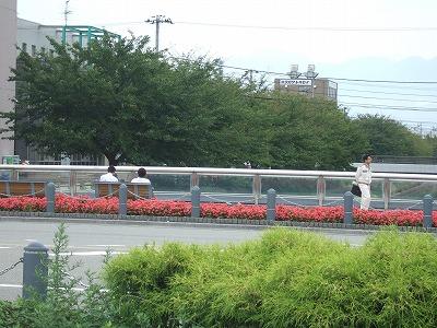 富山市:路面電車の活用が進む町01