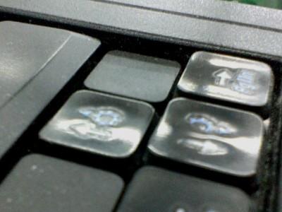 今の気合いにはキーボードもかなわぬ。