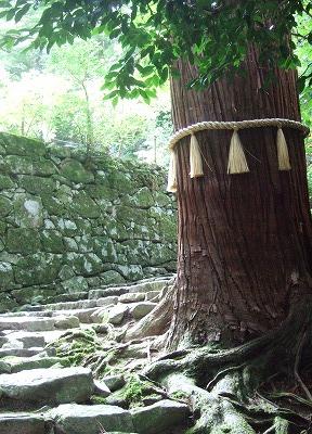 一山の全てが境内のような百済寺(親睦会旅行その3)08