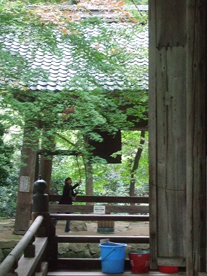 一山の全てが境内のような百済寺(親睦会旅行その3)09
