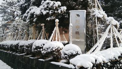 3月15日までにもう一回雪は降る、という経験則とインフルエンザ 01