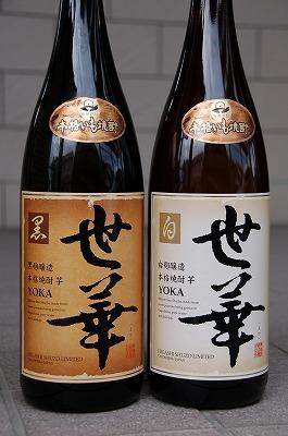 焼酎:世華(よか) 白麹02